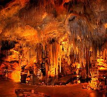 Tantanoola Cave - South Australia by Hans Kawitzki