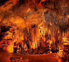 Tantanoola Cave - South Australia by Hans Kawitzki