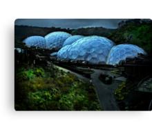 Eden Project Canvas Print