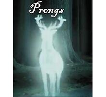 Prongs Harry Potter Photographic Print