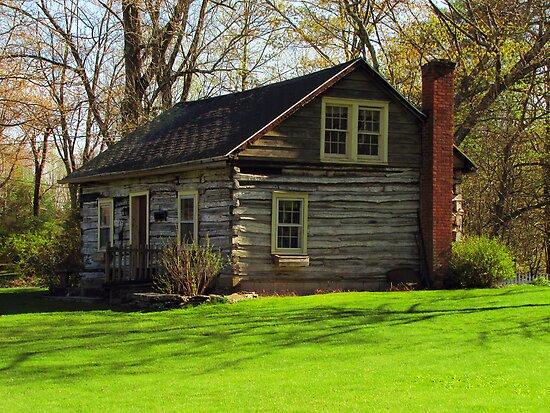 Rustic Cabin by Pamela Phelps