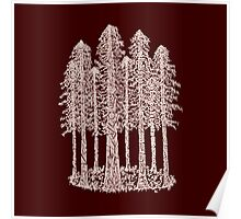 Coastal Redwoods Cathedral Ring Sketch - Red Number 2 Poster