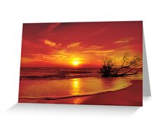 Evening in colour Greeting Card