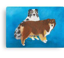My Buddies ~ Australian Shepherd ~ Oil Painting Canvas Print