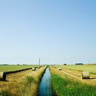 Toll Drove, Manea, Cambridgeshire by SteveDubois