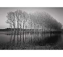 _ early morning _ Photographic Print