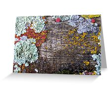 Lichen Playground Greeting Card