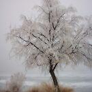 Frozen Winter by Gene Praag