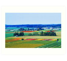 Over Skagit Valley Art Print