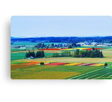 Over Skagit Valley Canvas Print