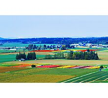 Over Skagit Valley Photographic Print
