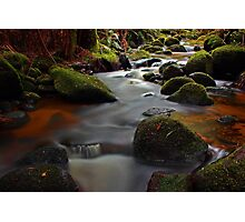 """Green Rocks"" Photographic Print"