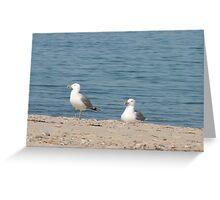 Vineyard beachgoers Greeting Card