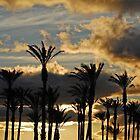 Desert Dawn by photojeanic