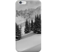 Mayflower Gulch Monochrome iPhone Case/Skin