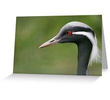 Common Crane Greeting Card