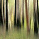 Walk with Nature by Kitsmumma