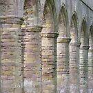 Fountain Abbey columns by monkeyferret