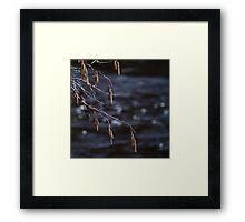 April river. III Framed Print