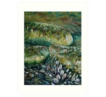 rocks and mussels Art Print