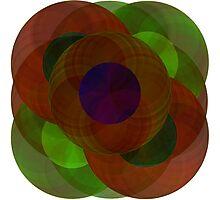 circles Photographic Print