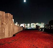 Poppies at the Tower of London - At Night with the Shard. by InterestingImag
