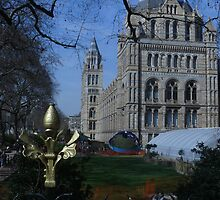 Natural History Museum, London by Portia Greenwood
