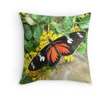 Macro Butterfly - Franklin Park Conservatory Throw Pillow