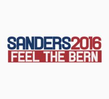 Bernie Sanders 2016 feel the bern by Boogiemonst