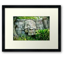 The face in the wall Framed Print