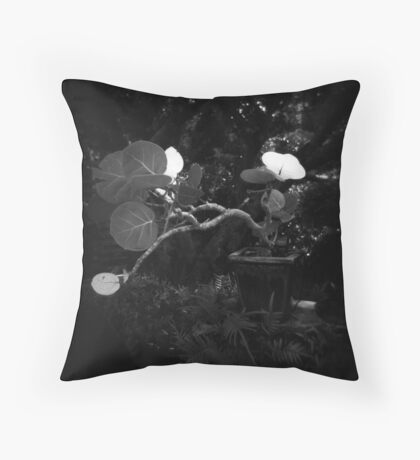 Seagrape Bonsai Throw Pillow