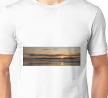 Seagull Sunset Unisex T-Shirt