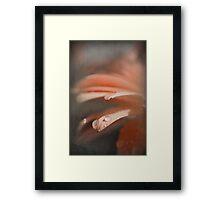 Whispering My Name Framed Print
