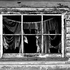 picture window by twistwashere