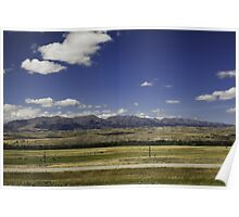 Montana Mountains and Cattle Poster