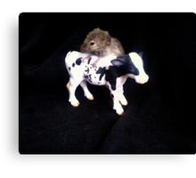 greedy mouse Canvas Print
