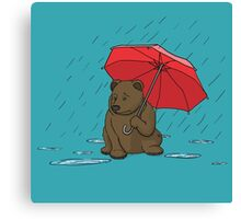 Drizzly Bear Canvas Print