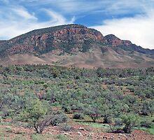 Aroona Valley & The Heysen Range, Flinders Ranges, South Australia by Adrian Paul