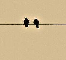 Two is for Joy. by Michael Skeard