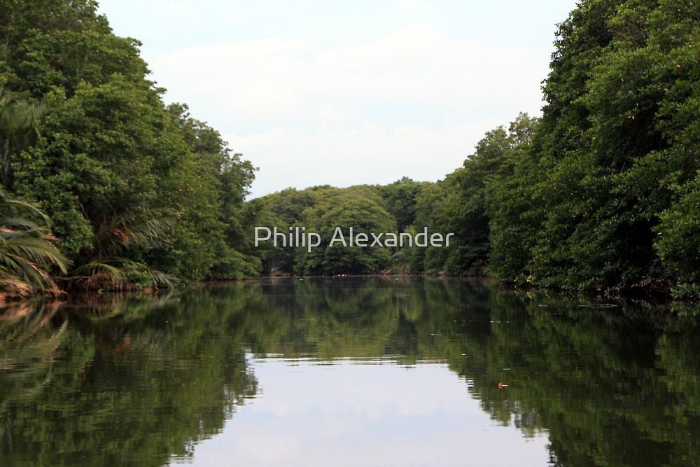 Brunei river, Brunei by Philip Alexander