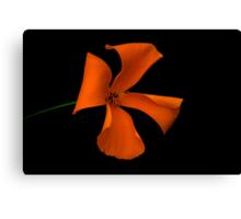 Flower of Eden Canvas Print