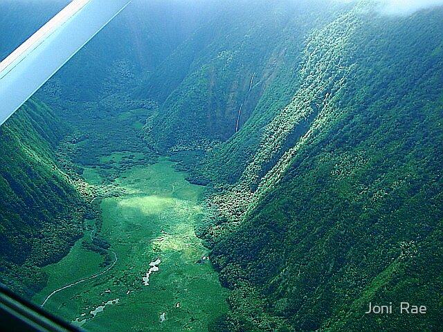 Waipio Valley, Big Island Hawaii by Joni  Rae