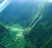 Waipio Valley, Big Island Hawaii by Joni  Rae