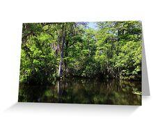 Big Cypress Swamp Greeting Card