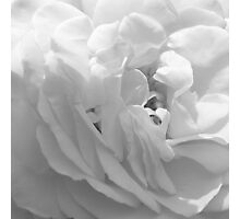 Blanche épure 6 Photographic Print