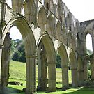 Rievaulx Abbey by monkeyferret