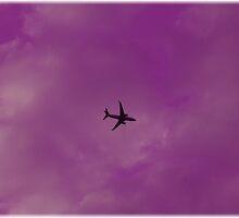 Wild Purple Yonder by Michael Degenhardt