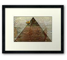 Egyptian Myth Framed Print