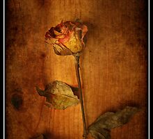 Post Mortem ... by Eugenio
