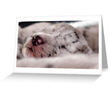 Baby sleep Greeting Card